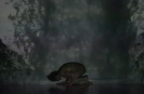 From Dark Waters_2